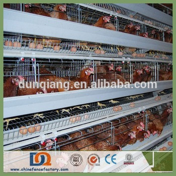 Trade Assurance Poultry Farm Laying Battery Cage for Nigeria Kenya Farmer